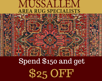 Area Rug Cleaning Specials Jacksonville Florida