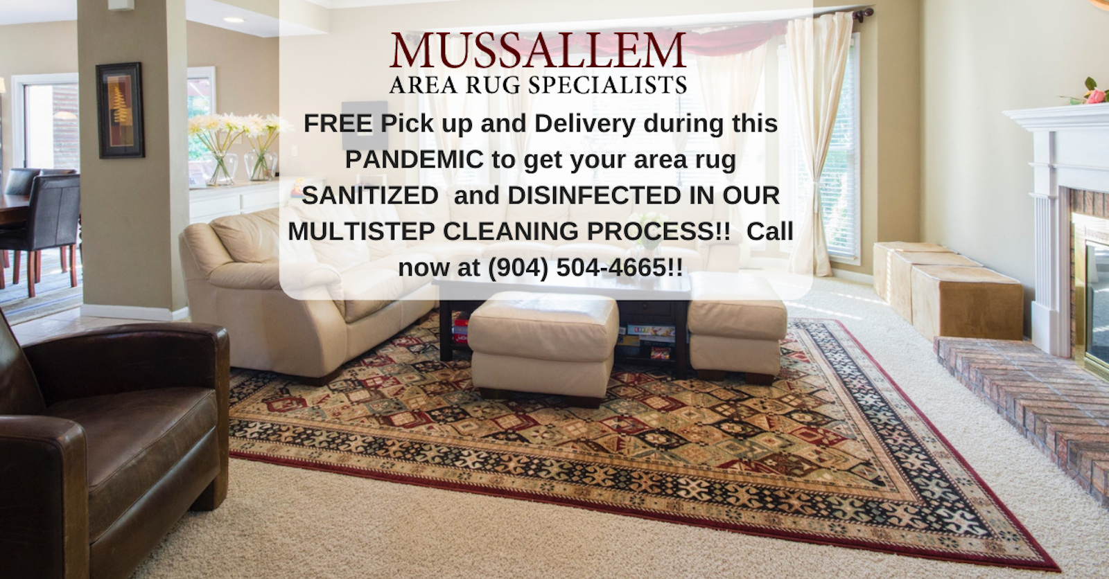 Area Rug Cleaning Jacksonville, Rug
